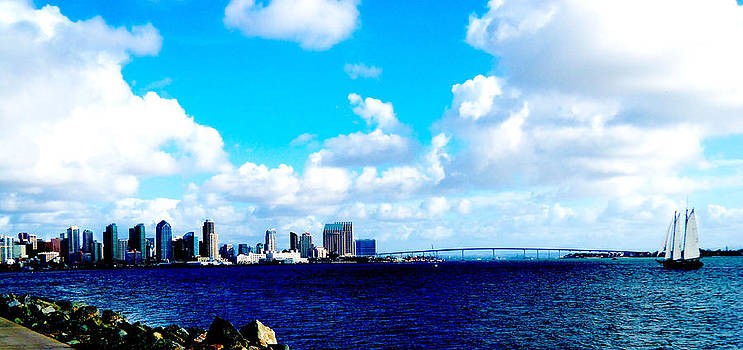 Picture Perfect San Diego by William  Dorsett