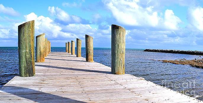 Pier by Andres LaBrada
