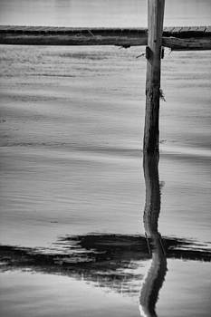 Karol  Livote - Pier Reflects As One