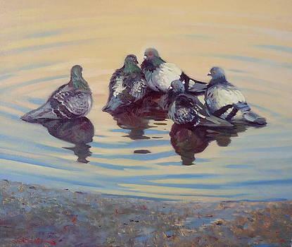Pigeon Talk by Dianne Panarelli Miller