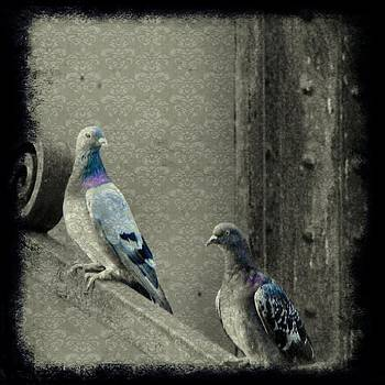 Gothicolors Donna Snyder - Pigeons In Damask