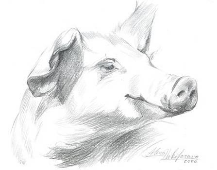 Piggy  by Alena Nikifarava