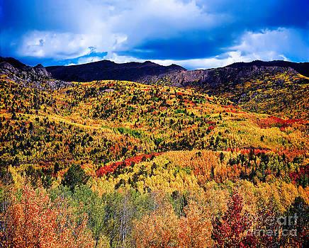 Jon Burch Photography - Pikes Peak Autumn