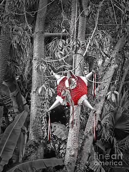 Joan  Minchak - Pinata in Woods