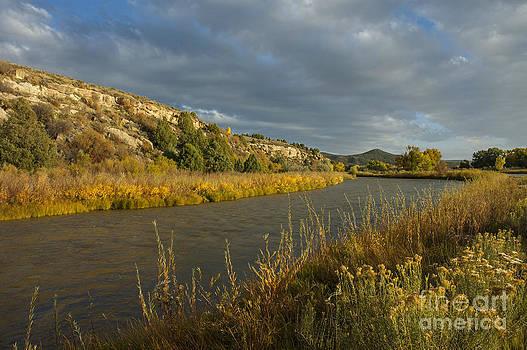 Jerry McElroy - Pine River at La Boca Ranch
