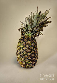 Pineapple by Don Fleming