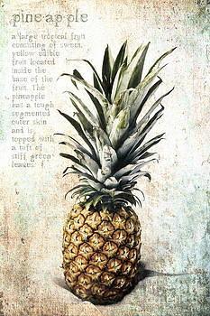 Pineapple for Captain Obvious by Lori Frostad