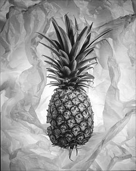 Pineapple by Morocco Flowers Images