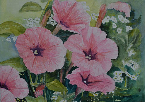 Pink Beauties by Betty Mulligan
