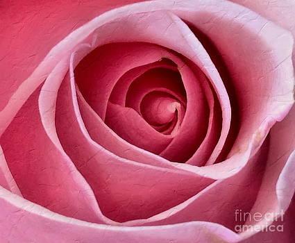 Andrea Kollo - Pink Blush