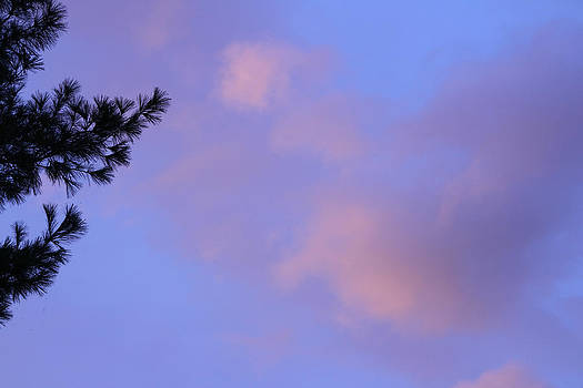 Pink Evening Clouds by Paul Thomas