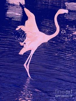 Pink Flamingo by Avis  Noelle