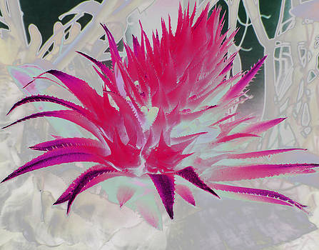 Pink Flower Abstract by Louise Grant