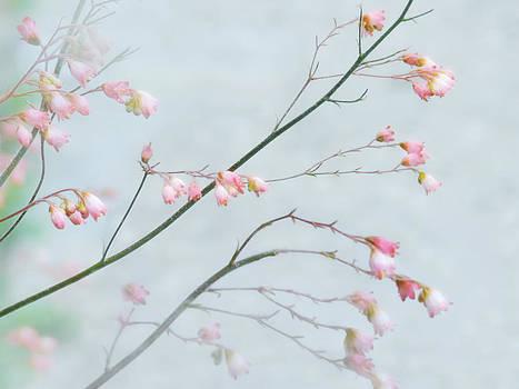 Nina Bradica - Pink Flower Branches-1