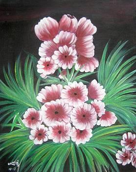 Pink flowers by Usha Rai