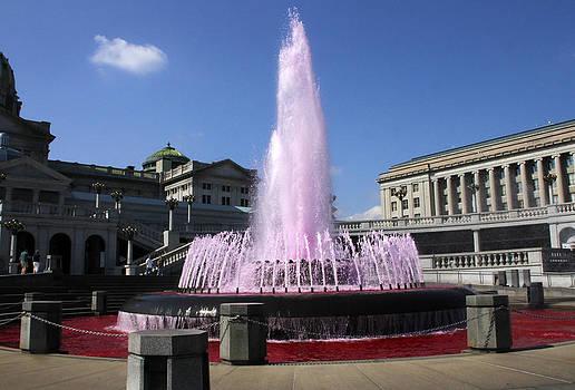 Pink Fountain by David Simons