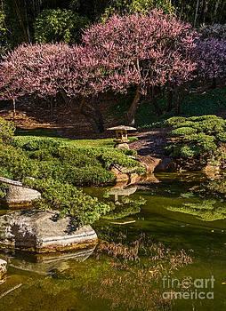 Jamie Pham - Pink Gardens