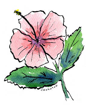 Pink Hibiscus by Diane Thornton