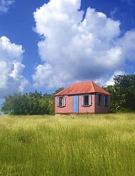 Jennifer Lamanca Kaufman - Pink Island House