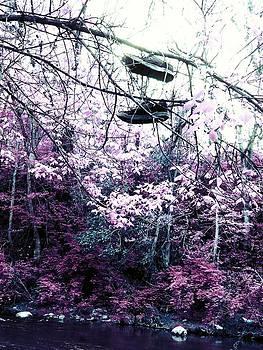 Pink by Kiara Reynolds