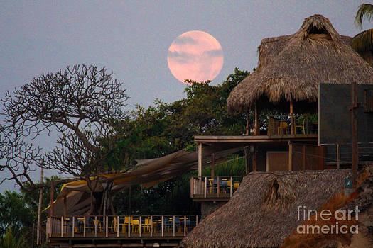 Pink Moonset by Stav Stavit Zagron