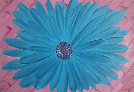 Pink n Blue by Pallavi Talra