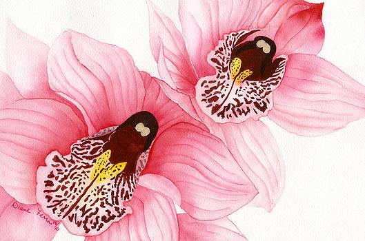 Pink Orchids by Diane Ferron
