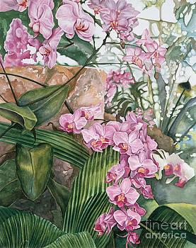 Pink Orchids by Lisa Prusinski