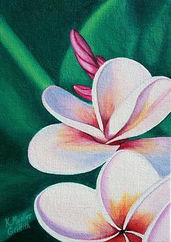 Pink Plumerias by Kristine Mueller Griffith