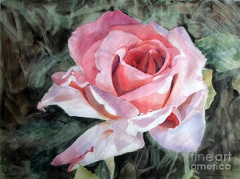 Pink Rose Greg by Greta Corens