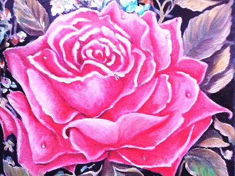 Pink Rose by Yolanda Rodriguez