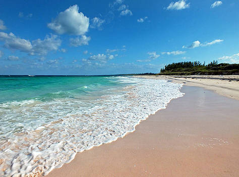 Pink Sand Beach 1 on Eleuthera by Duane McCullough