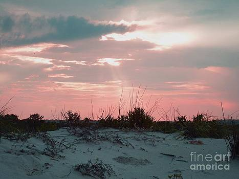 Pink Skies by Chad Thompson