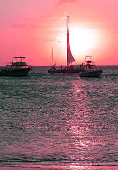 Carolyn Stagger Cokley - pink sunset