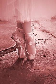 Pink Swan by Curtis Keisler