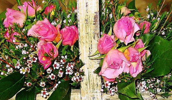 Pink Sweetheart Roses by Judy Palkimas
