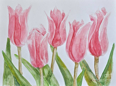 Pink Tulips by Gracie Hampton