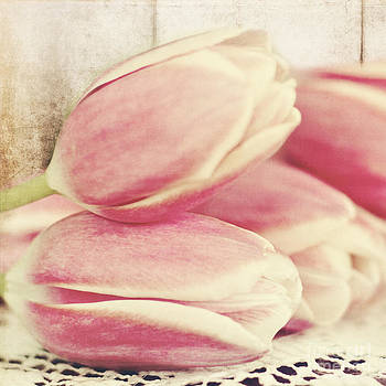 Pink Tulips by Pam  Holdsworth