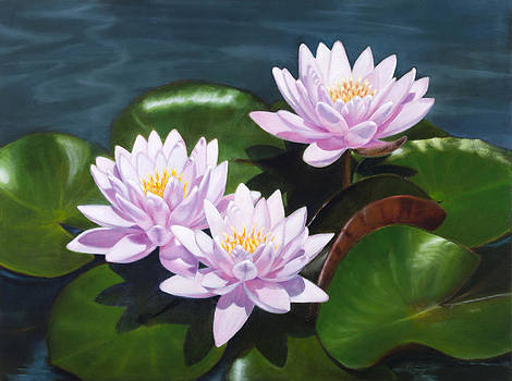 Pink Water Lilies - oil painting on canvas by Elena Polozova