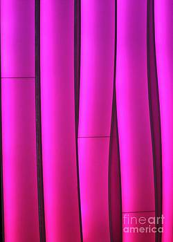 Sabrina L Ryan - Pink Waves