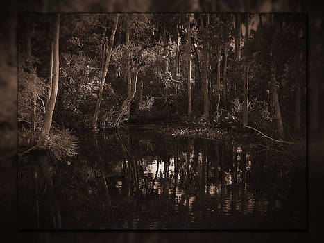 Pithlachascotee Backwater No. 3 by Phil Penne