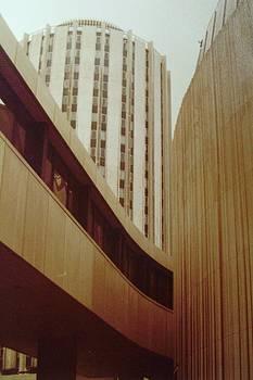 Pitt Towers by Joann Renner
