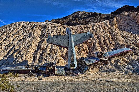 Plane Wreck by Arnold Despi