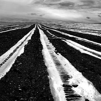 BERNARD JAUBERT - Plastic tarp in a field. Auvergne. France