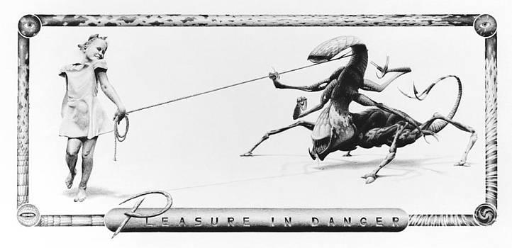 Pleasure In Danger by Vincent Jimenez