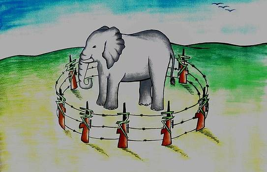 Plight of elephants by Tanmay Singh