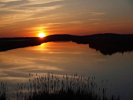 Plum Island Sunset by Henry Gray