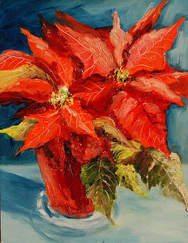 Donna Pierce-Clark - Poinsettia Sunrise