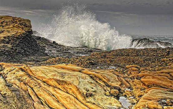 Point Lobos Wave by Julianne Bradford