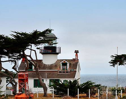 Point Pinos Lighthouse by Shauna Fackler